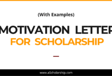 Motivation Letter for Scholarship (With Examples) Expert's Guidance on Writing a Winning Scholarship Motivation Letter