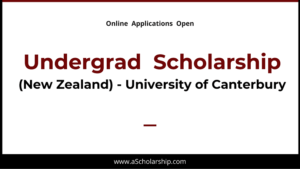 Undergrad (Bachelor) Scholarship at UC College New Zealand