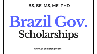 Brazil Scholarships List of Top Scholarships in Brazil