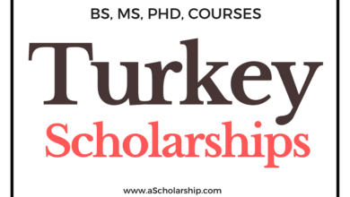 List of Top 5 Scholarships in Turkey - Turkiye Scholarships List