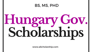 Scholarships in Hungary - Study in Hungary for Free!