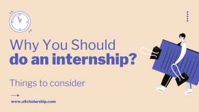 Reasons Why You Should do an Internship