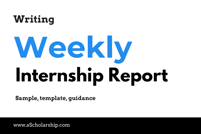 Weekly Internship Report Format, Example, Sample Writing a Weekly Internship Report