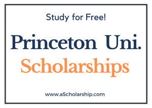 Princeton University scholarships 2022-2023 Submit Application