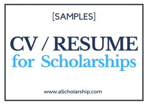 Writing a Detailed CV for Scholarship Application