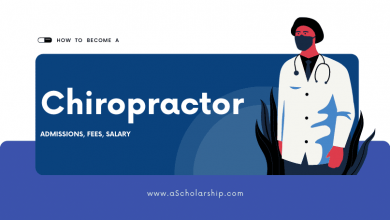 Chiropractor Doctor of Chiropractic Degree Admissions, Best Chiropractor Schools, Fees, and Salary Packages