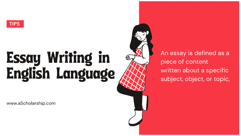 [Pro Guide] Essay Writing in English Language 10 Key Steps