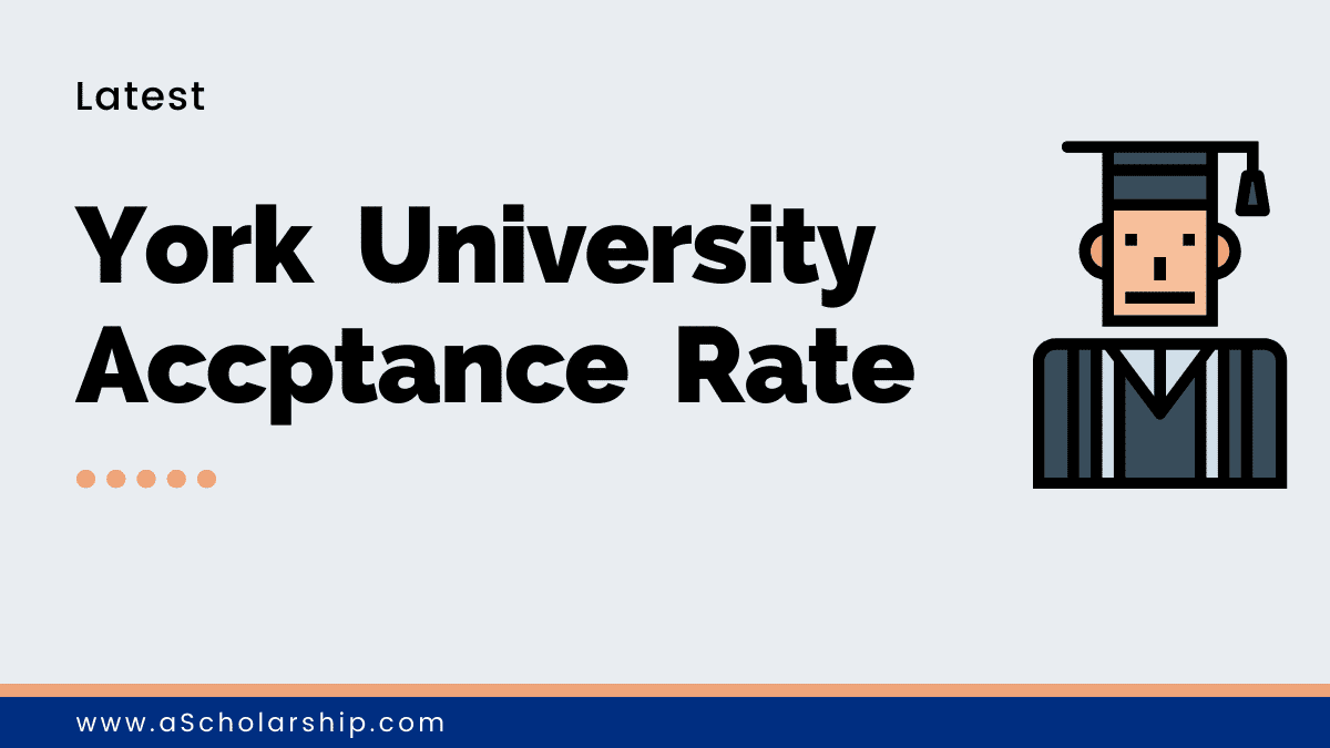 York University Toronto Acceptance Rate Latest Figures